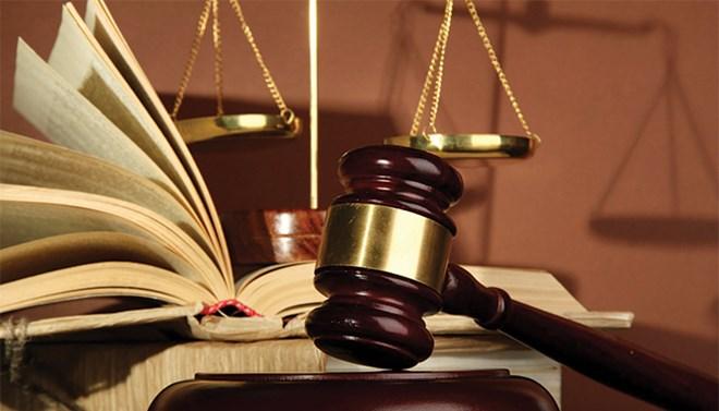 Ngành Luật dân sự